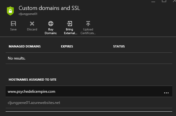 DR-dns-portal-custom-domain